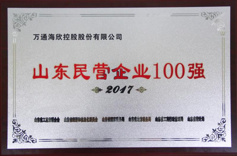 2017山东民营企业100强